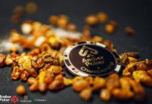 Photo of На ПокерДом будут организованы сателлиты к событиям Amber Poker Championship